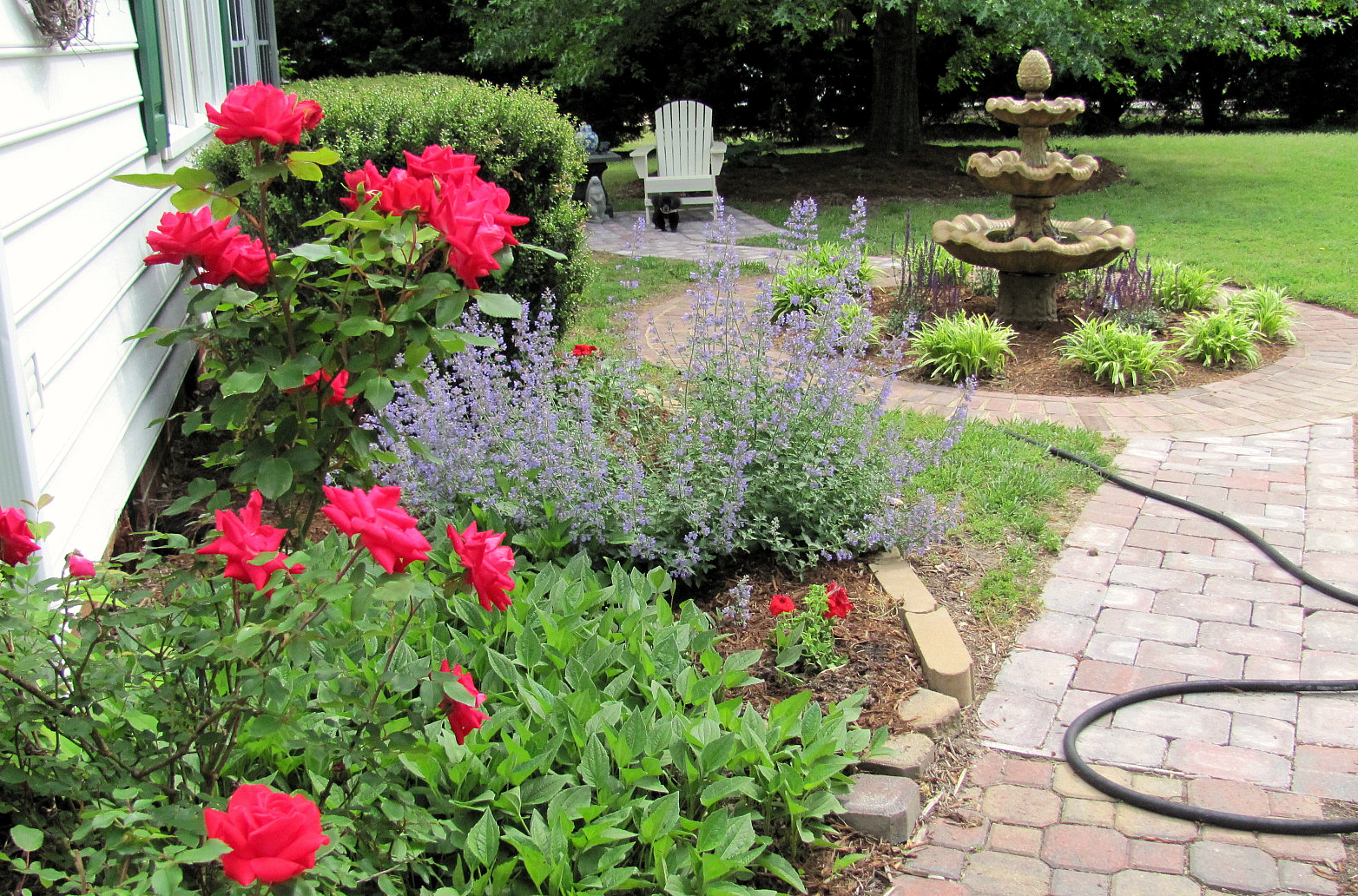 Southern Home Sweet Home Gardens