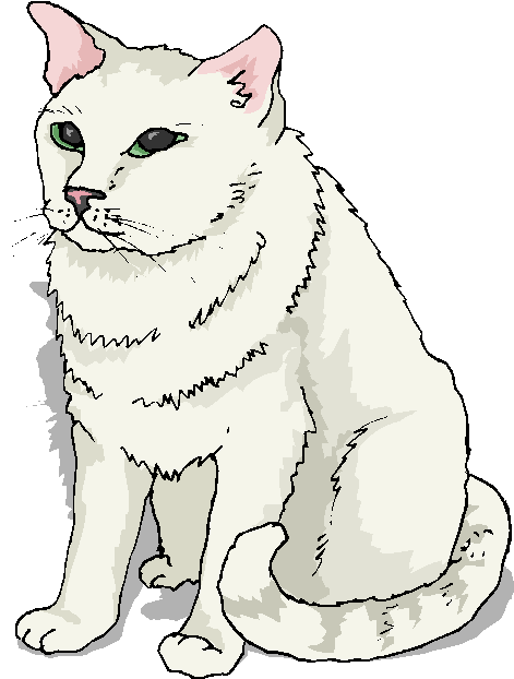 White Big Cat Free Clipart