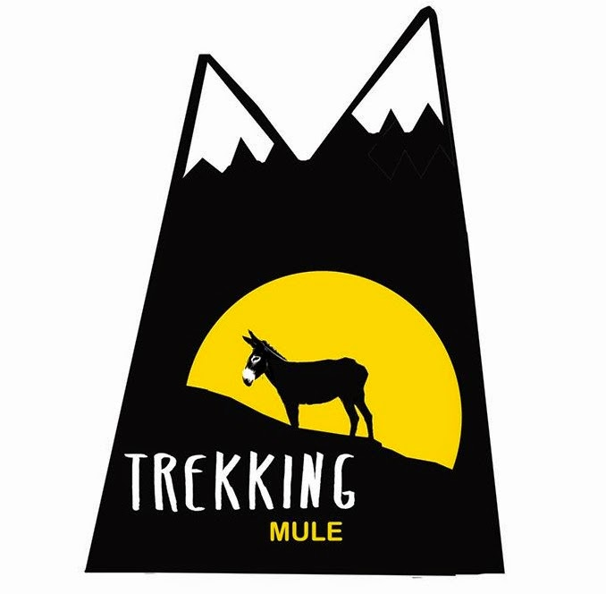 TREKKING MULE