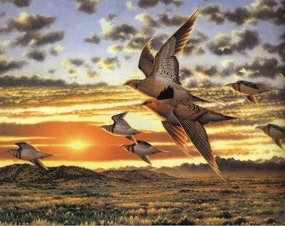 aves-al-oleo
