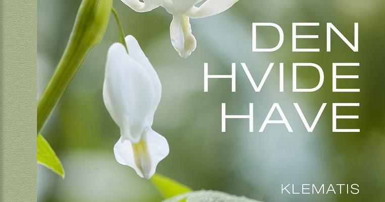 HAVEFOLKET: DEN HVIDE HAVE Den Hvide Djaevel
