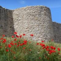 Castell de Claramunt (Liudmila Liutsko)
