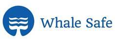Il progetto Whalesafe a bordo delle navi Costa Crociere