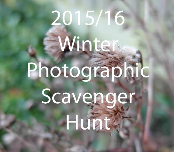 2015 Winter Photography Scavenger Hunt