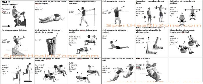 Rutinas de ejercicios con pesas para mujer pictures to pin for Rutinas gimnasio