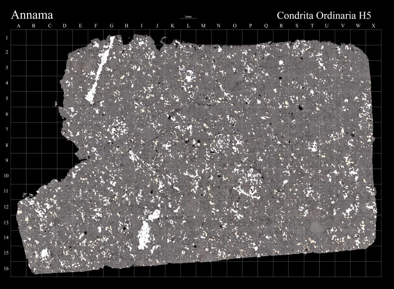 Annama meteorite. Credit: CSIC