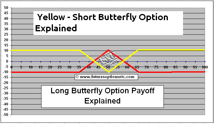 Options trading explained layman's terms