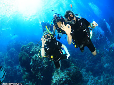 PADI Discover Scuba Diving at Sail Rock with Camille
