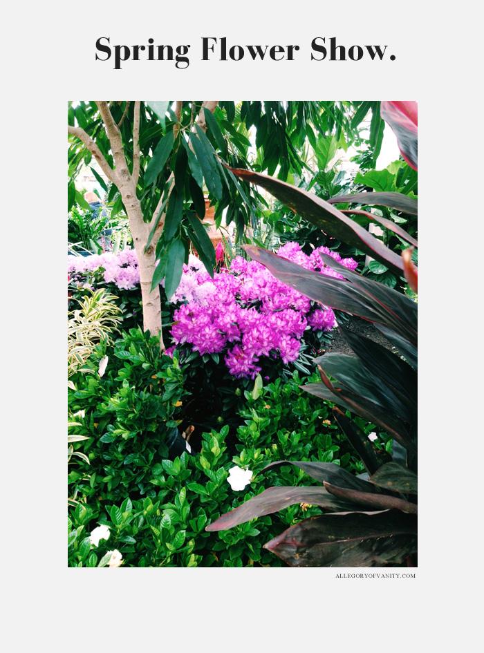 Spring Flower Show | Azalea | Allegory of Vanity
