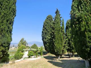 The MIP gardens picnic area