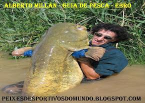ALBERTO MILLÁN