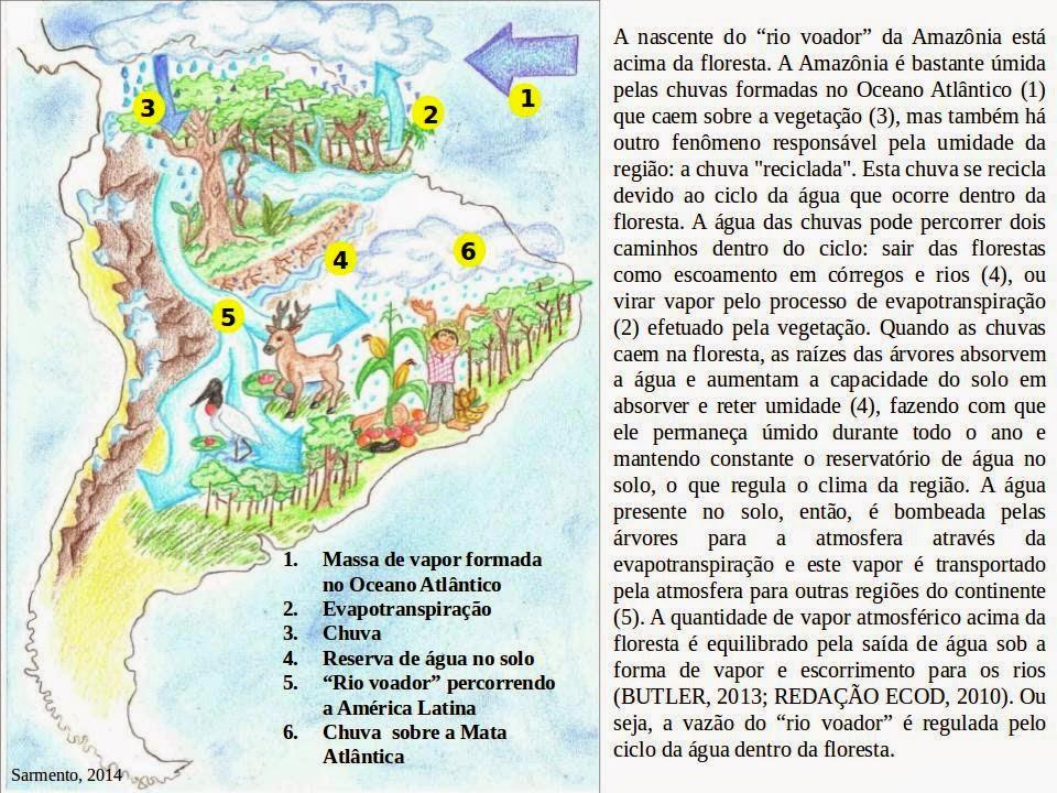 Formaçao e fluxo da chuva na America Latina