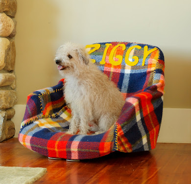 DIY NETWORK Pet Beds