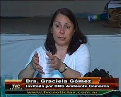 TVC Noticias Ventana