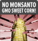 Sign the Petition and Stop GMO Corn!
