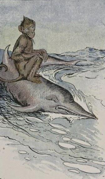 Cerita Dongeng_Monyet dan Lumba-lumba