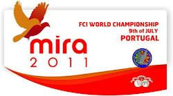 Mundial Columbofilia 2011 em Mira