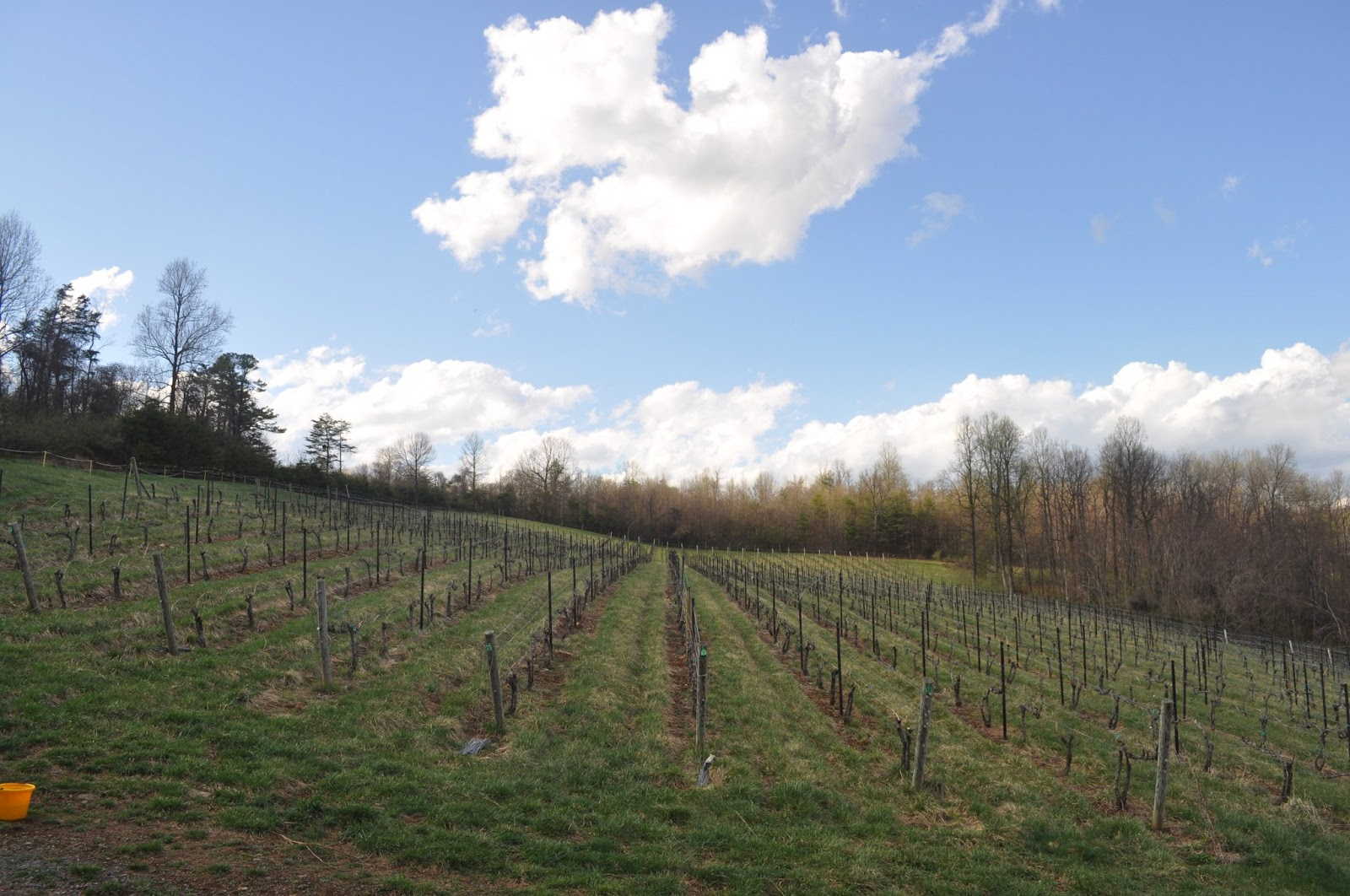 Chester Gap Cellars one of many small wineries that dot the Shenandoah valley & 365 Summits For Cancer: Summits #106-108 Stony Man Little Stony Man ...
