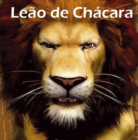 Leão de Chácara