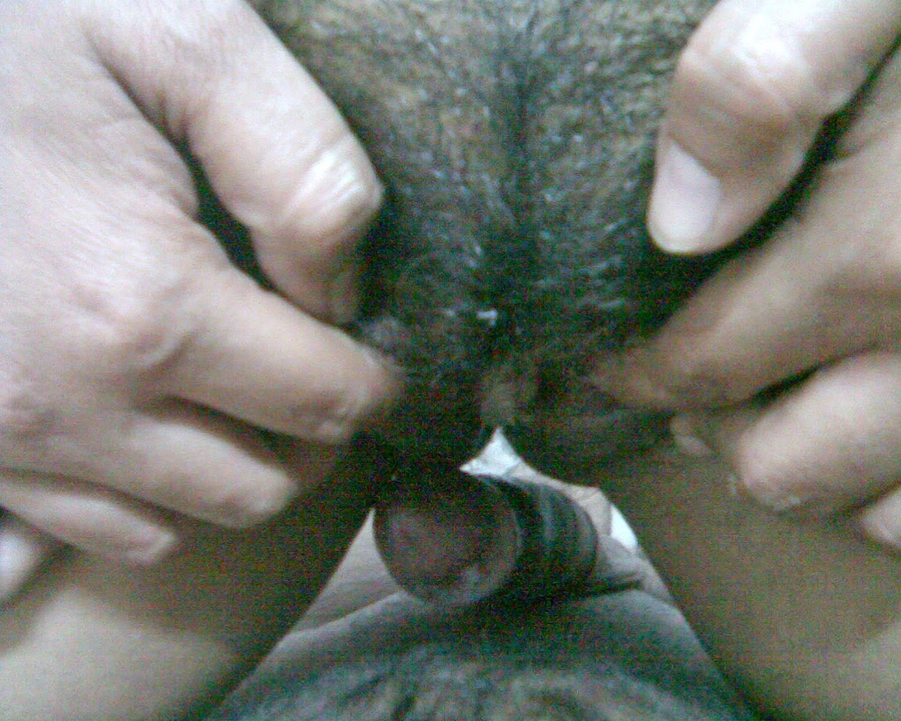 Indian bhabhi devar sex