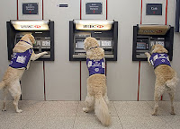 Bank of America ATM Withdrawal Limit