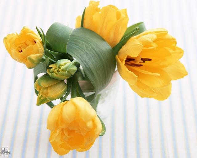 Flowers HD Desktop Wallpaper -12