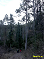 La Pinassa de Cal Ratera. Autor: Joan Borràs