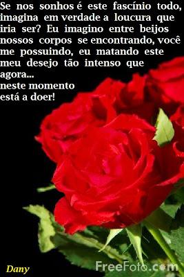 http://danysempre.blogspot.com.br/2015/01/uma-rosa-e-razao.html