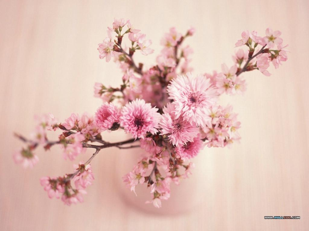 Flower Art Wallpapers Free