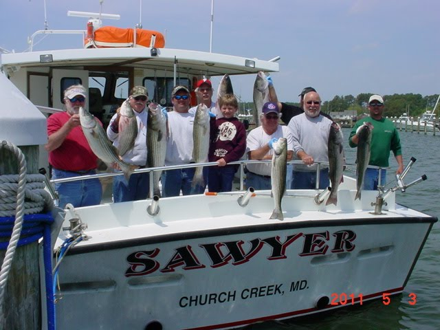 Saltwater report maryland charter fishing for Virginia saltwater fishing report