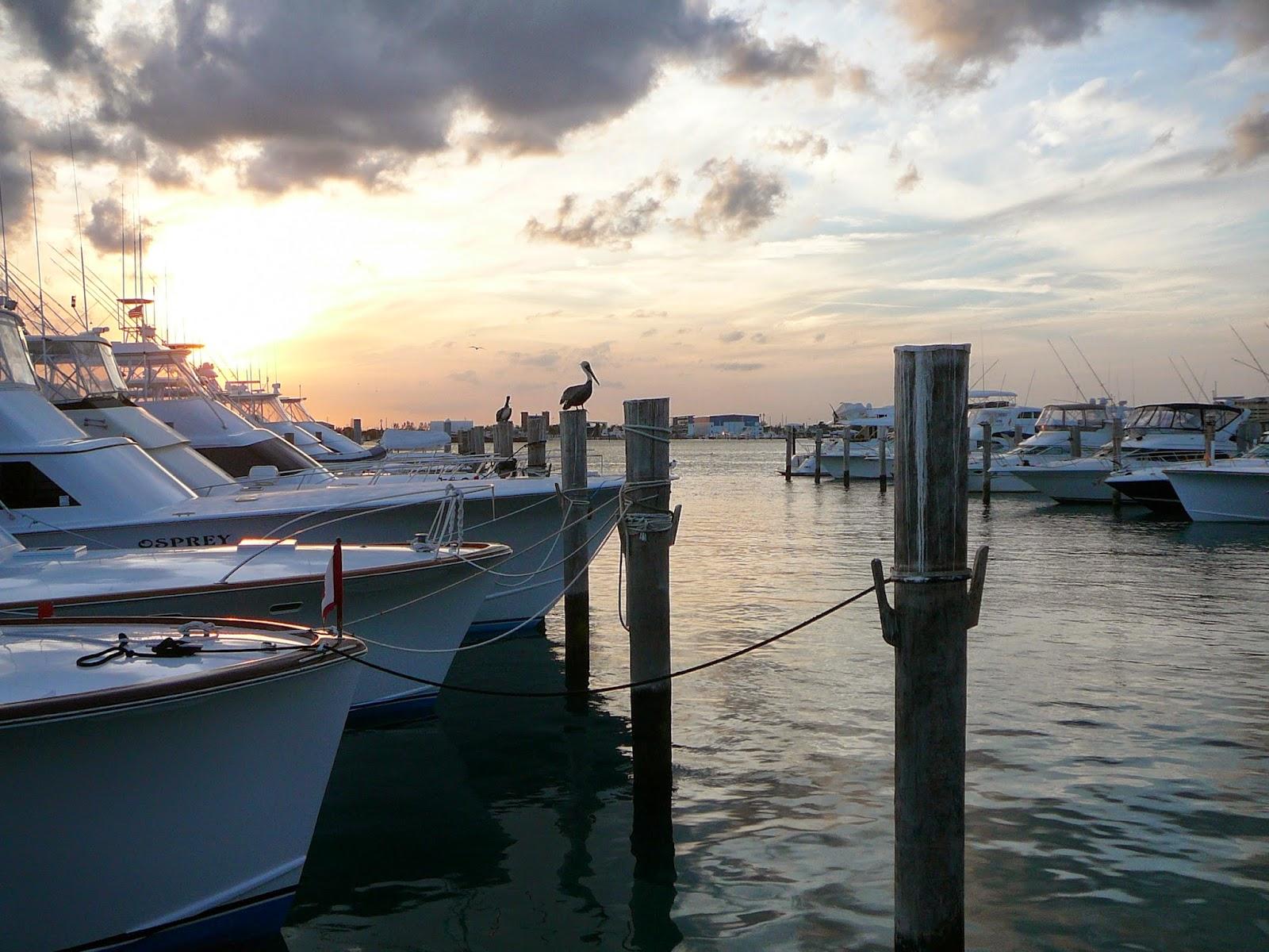 Third age traveler june 2014 for Sailfish marina