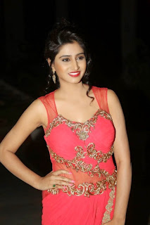 Shamili Transparent Red Saree Latest Unseen Pictureshoot (6).JPG