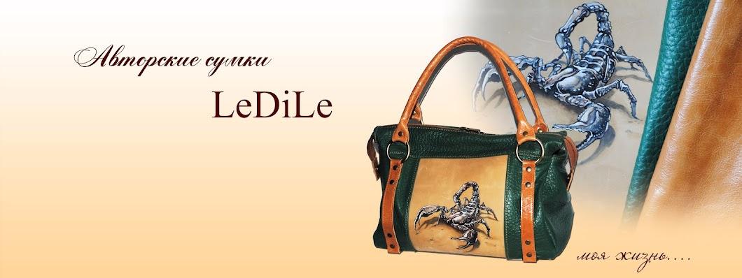Авторские сумки от LeDiLe