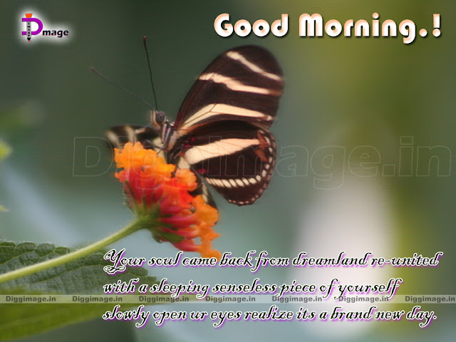 Tags Good Morning Greetings Sms Good Morning Pictures Good Morning