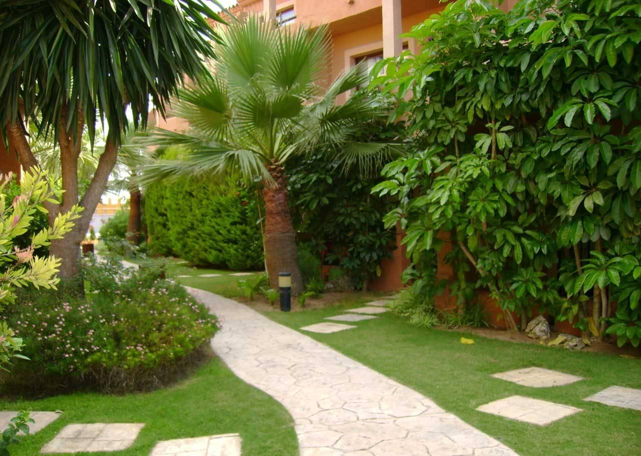 Mantenimiento de jardines el eden for Mantenimiento de jardines