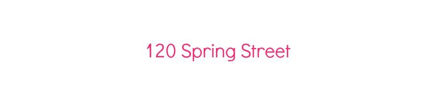 120 Spring Street