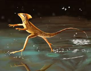 basilisk lizard jesus