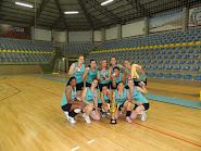 Taça Madevigas de Voleibol