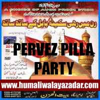 http://ishqehaider.blogspot.com/2013/11/parvez-pilla-party-nohay-2014.html