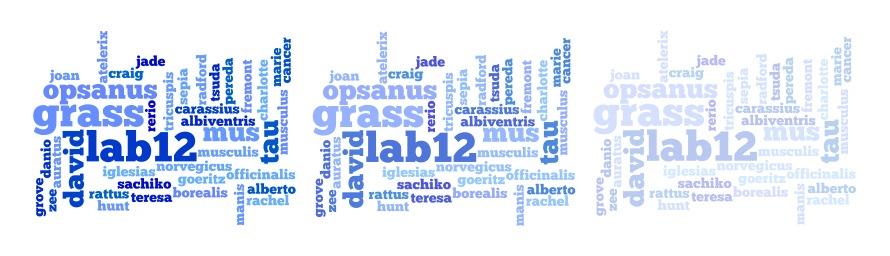 Grass Lab 2012