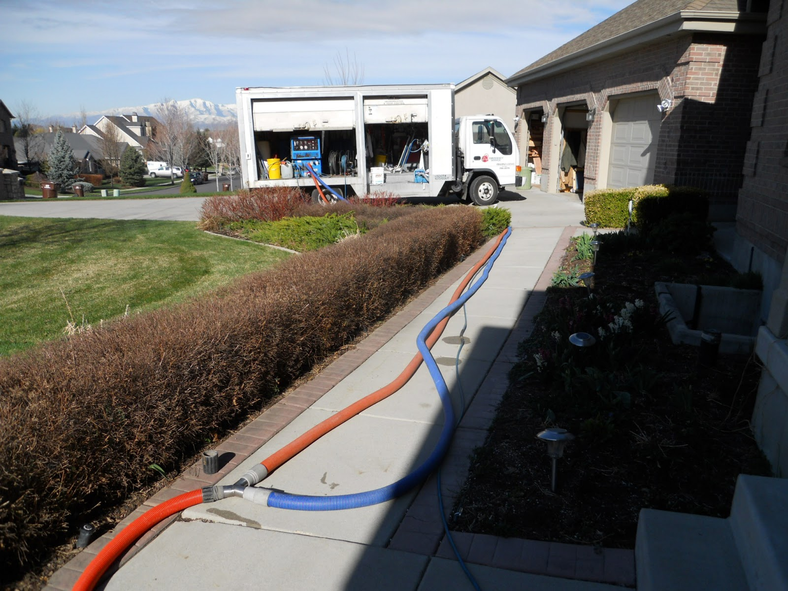 carpet cleaning in utah county here i am running 4 to the door to get more