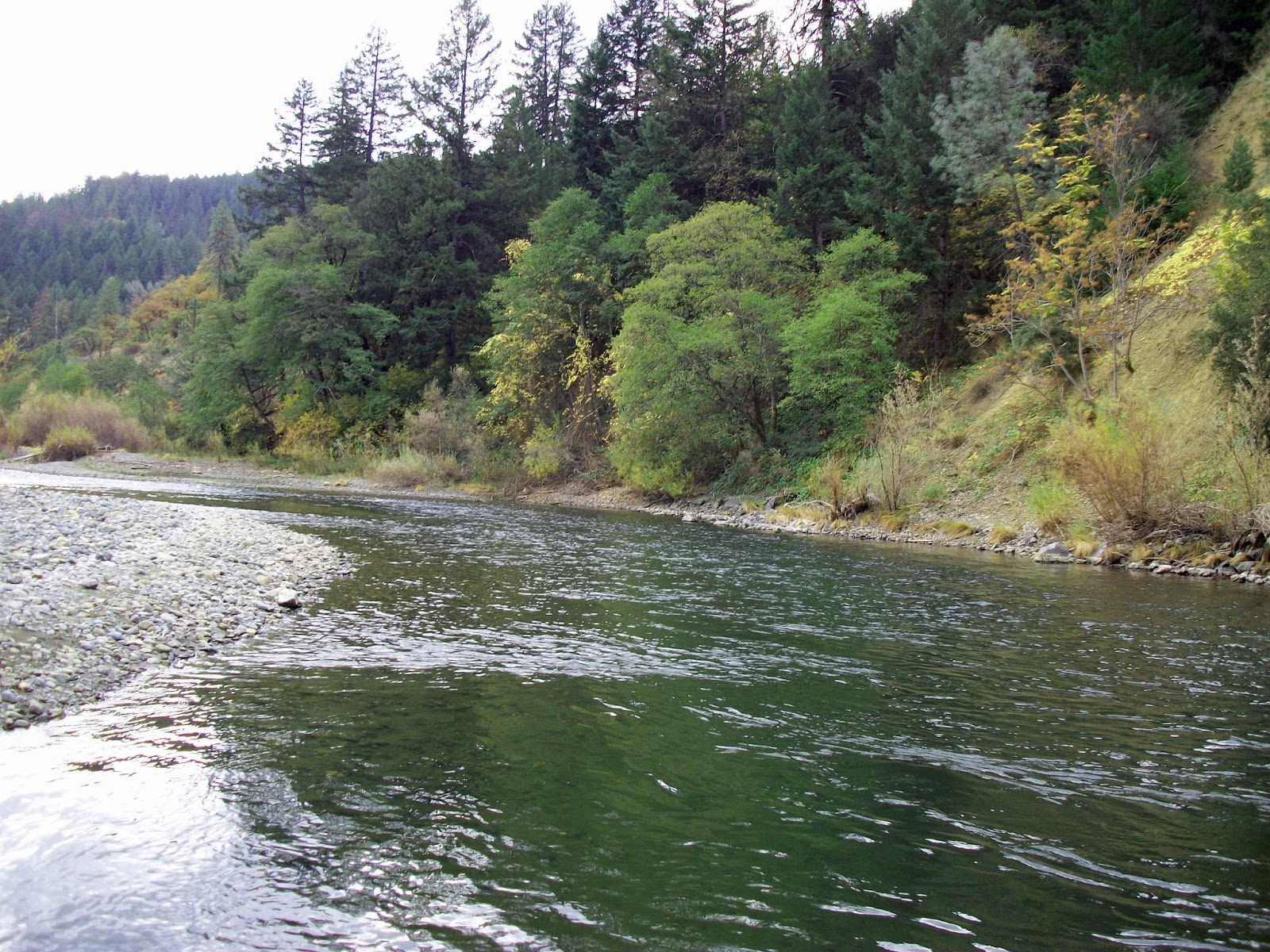 Jon baiocchi fly fishing news trinity river steel on for Trinity river fishing
