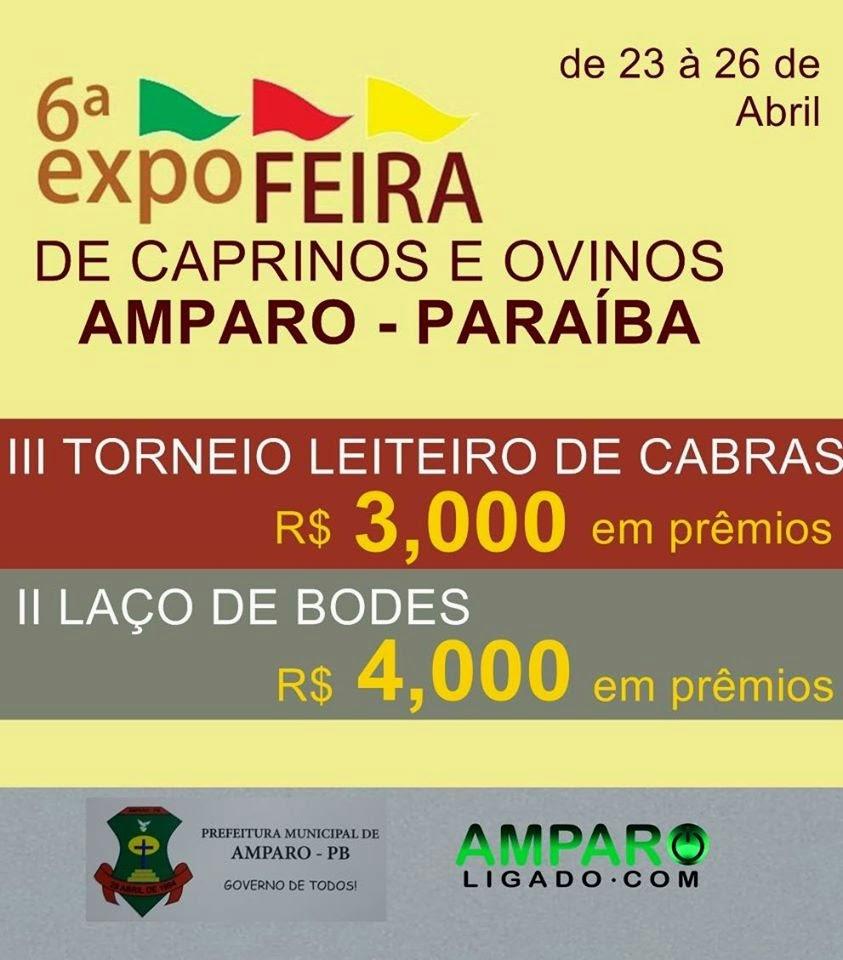 VI Expofeira em Amparo