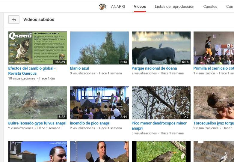 Canal vídeos ANAPRI