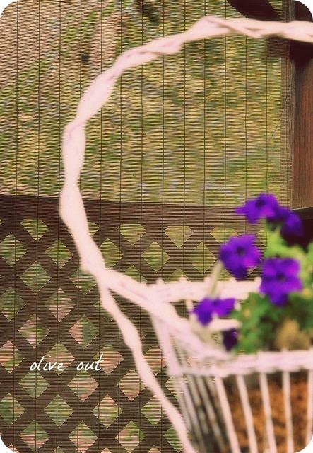 Olive Out Funeral Basket Freak