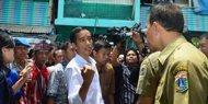 Pengamat Jokowi bisa dicemooh jika dipaksakan jadi capres 2014