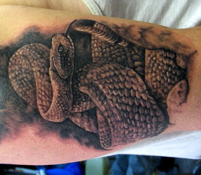 3D Snakes Tattoo on Biceps and Triceps