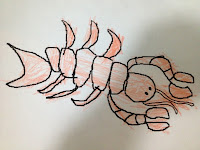 lobster colouring sheet, lobster coloring sheet, lobster picture
