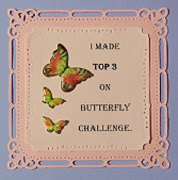 Butterfly Challenge Top 3