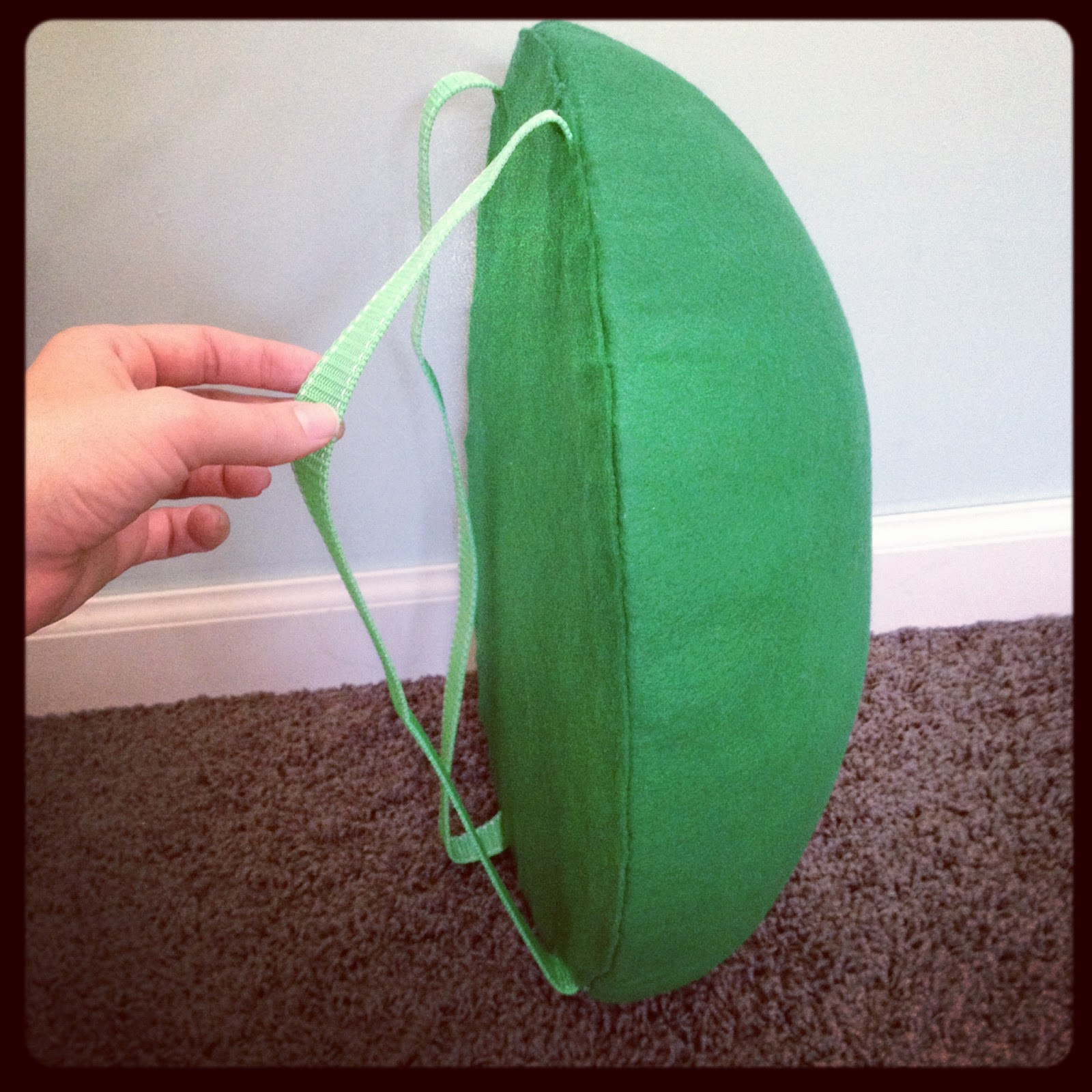 The almost perfectionist homemade turtle costume solutioingenieria Gallery